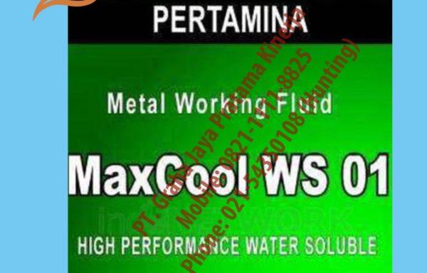 MaxCool WS 01